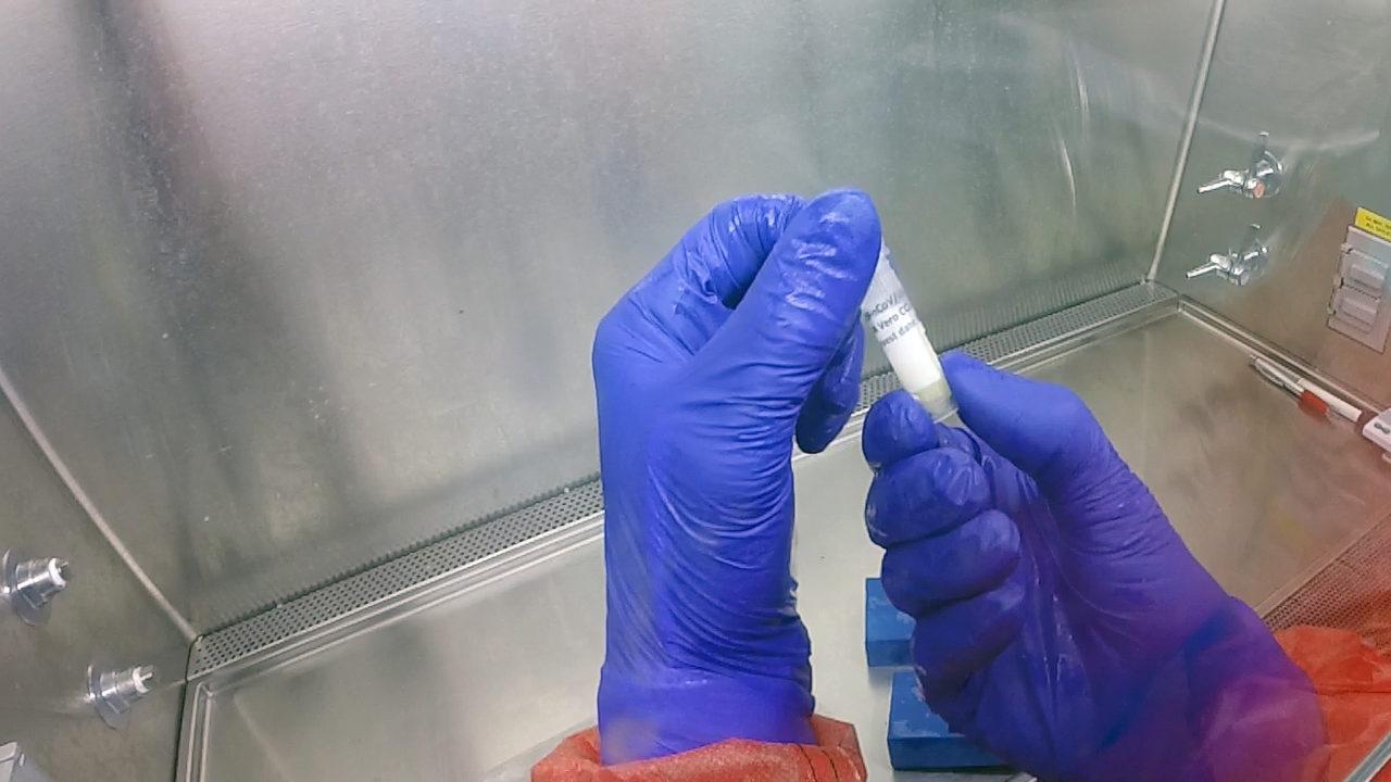 https://www.westafricanpilotnews.com/wp-content/uploads/2020/03/Coronavirus_002-1280x720.jpg