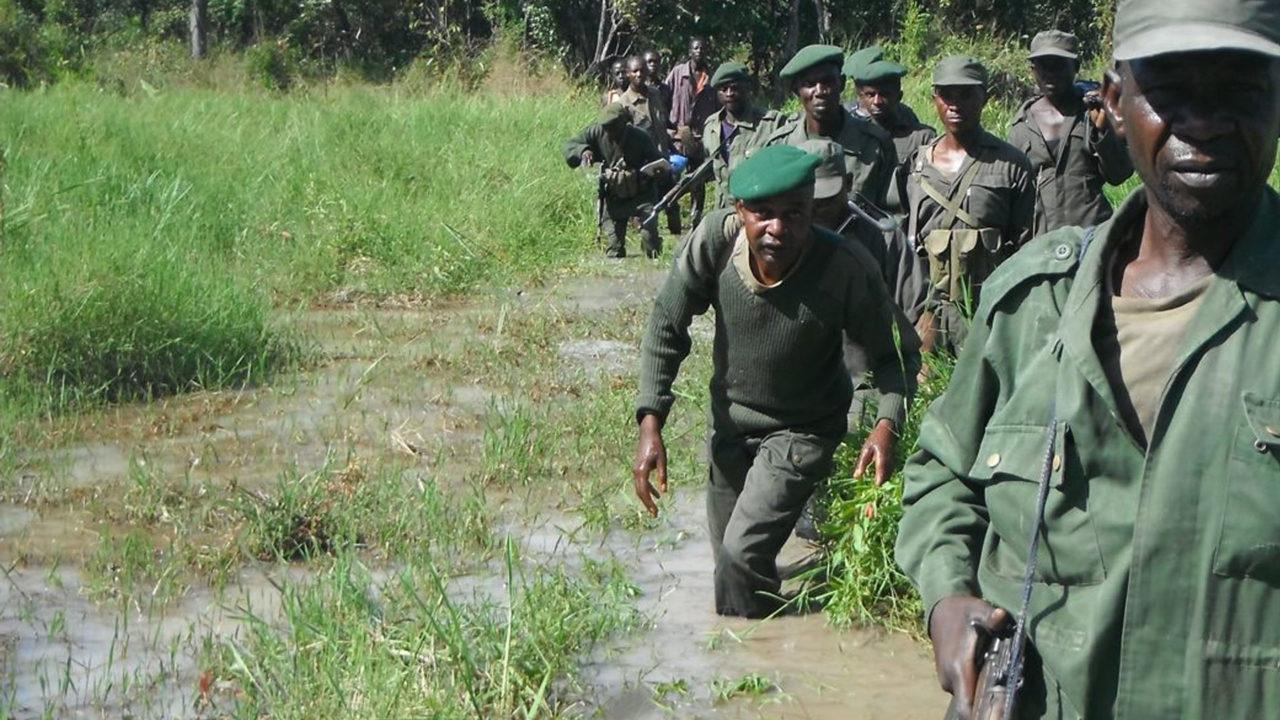 https://www.westafricanpilotnews.com/wp-content/uploads/2020/04/DNC-Park-Rangers_2-1280x720.jpg