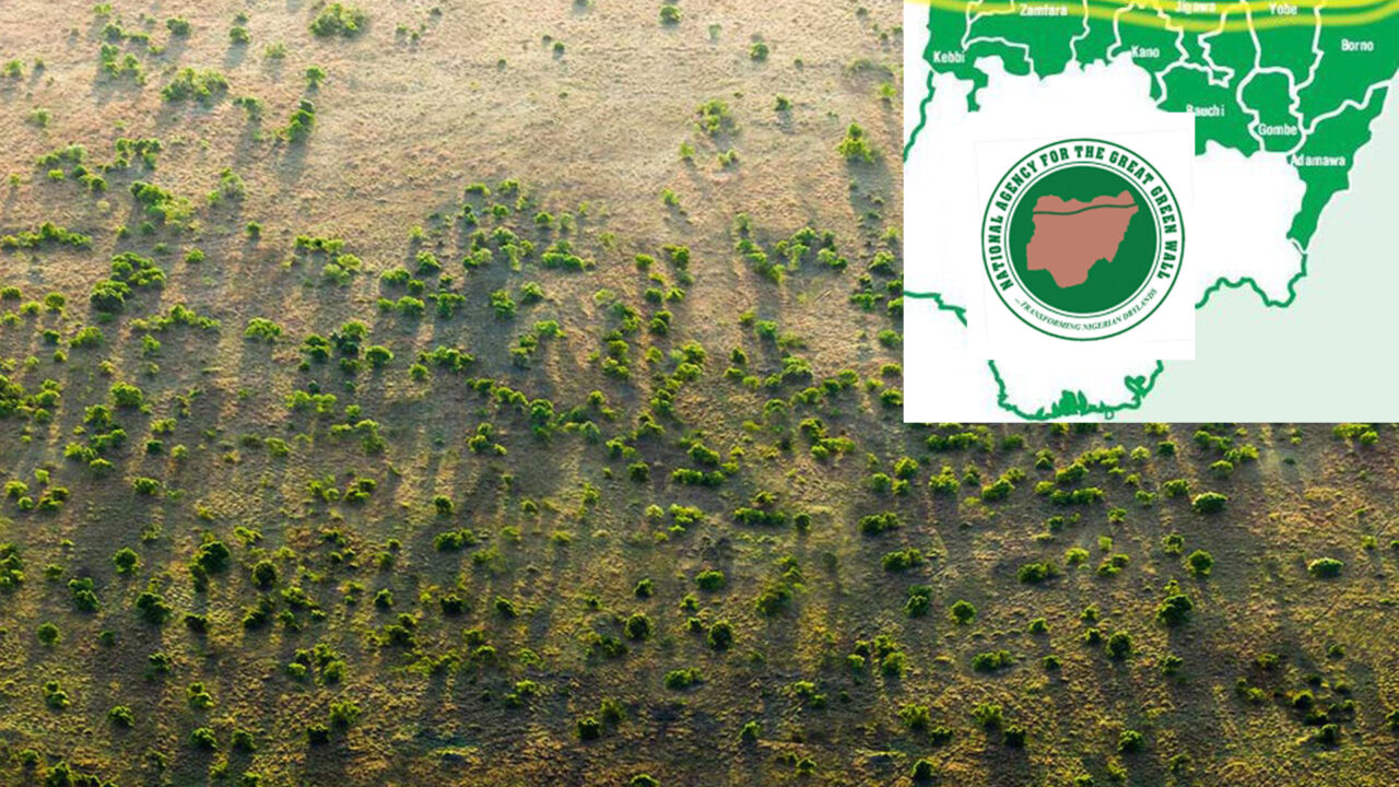 https://www.westafricanpilotnews.com/wp-content/uploads/2020/10/Great-Green-Wall-Frontline-States-10-13-20-1280x720.jpg