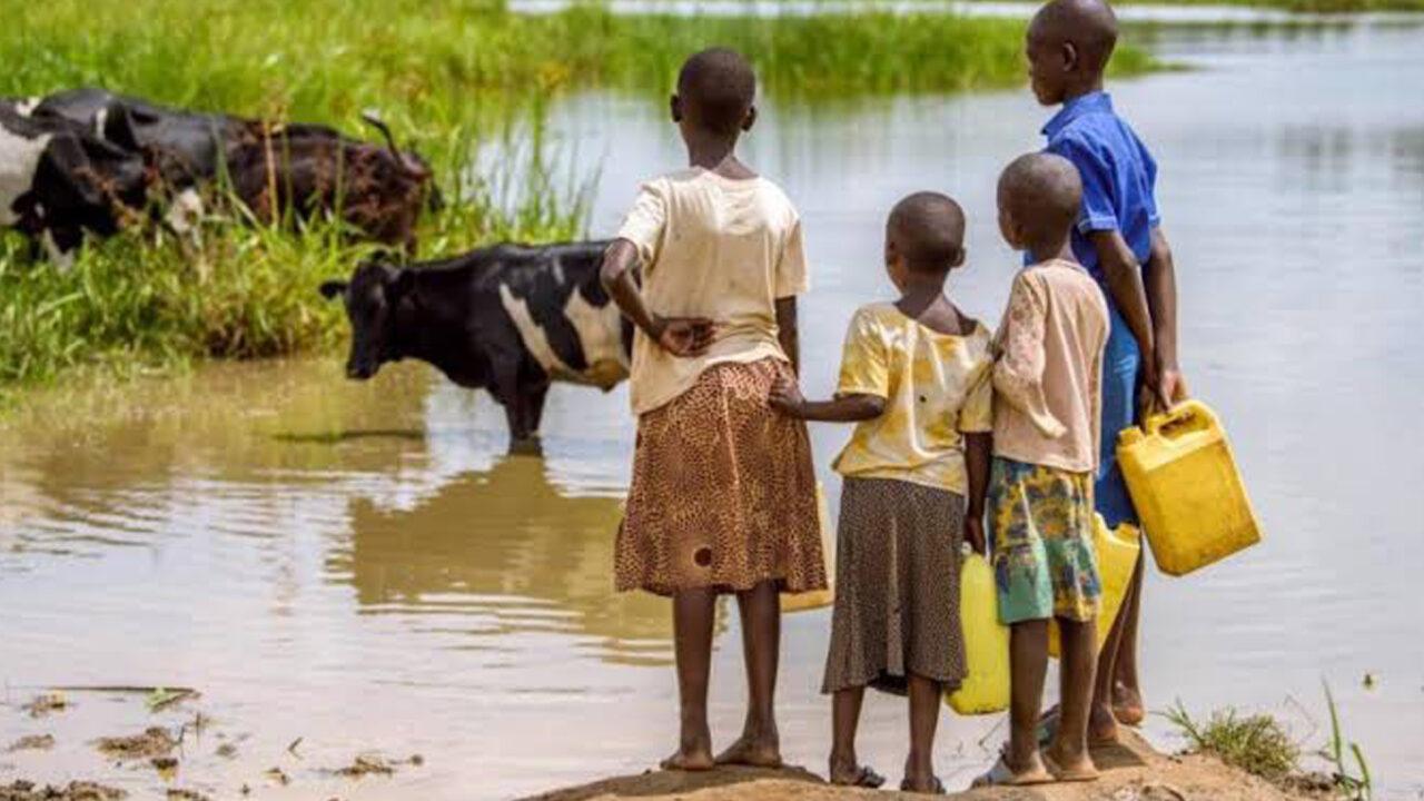 https://www.westafricanpilotnews.com/wp-content/uploads/2020/10/Water-Dirty-Spring-with-Animals-10-17-20_2-1280x720.jpg