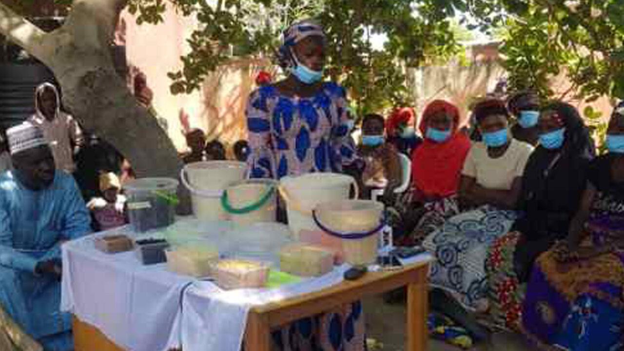 https://www.westafricanpilotnews.com/wp-content/uploads/2020/12/Agriculture-Going-into-the-Cassava-Farming-Business-nigeria-File-Photo-12-5-1280x720.jpg