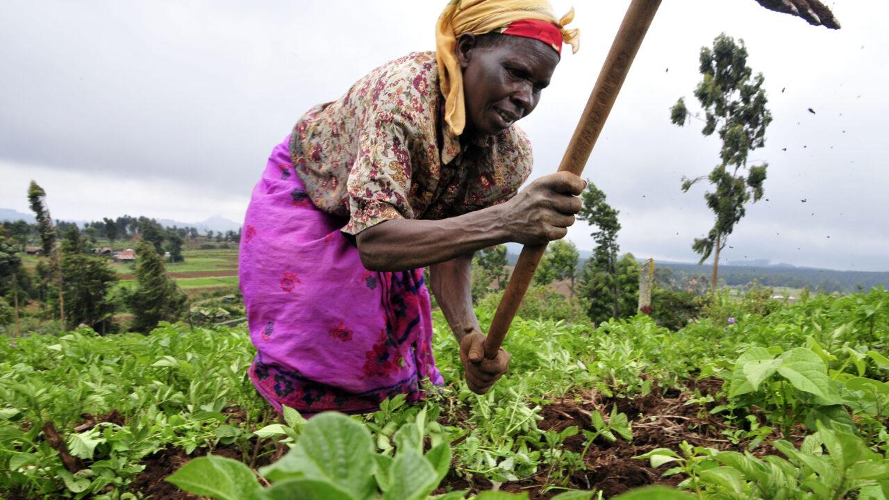 https://www.westafricanpilotnews.com/wp-content/uploads/2020/12/Farmers-Women-Nigeria-Demand-Mechanized-implements-12-12-20-1280x720.jpg