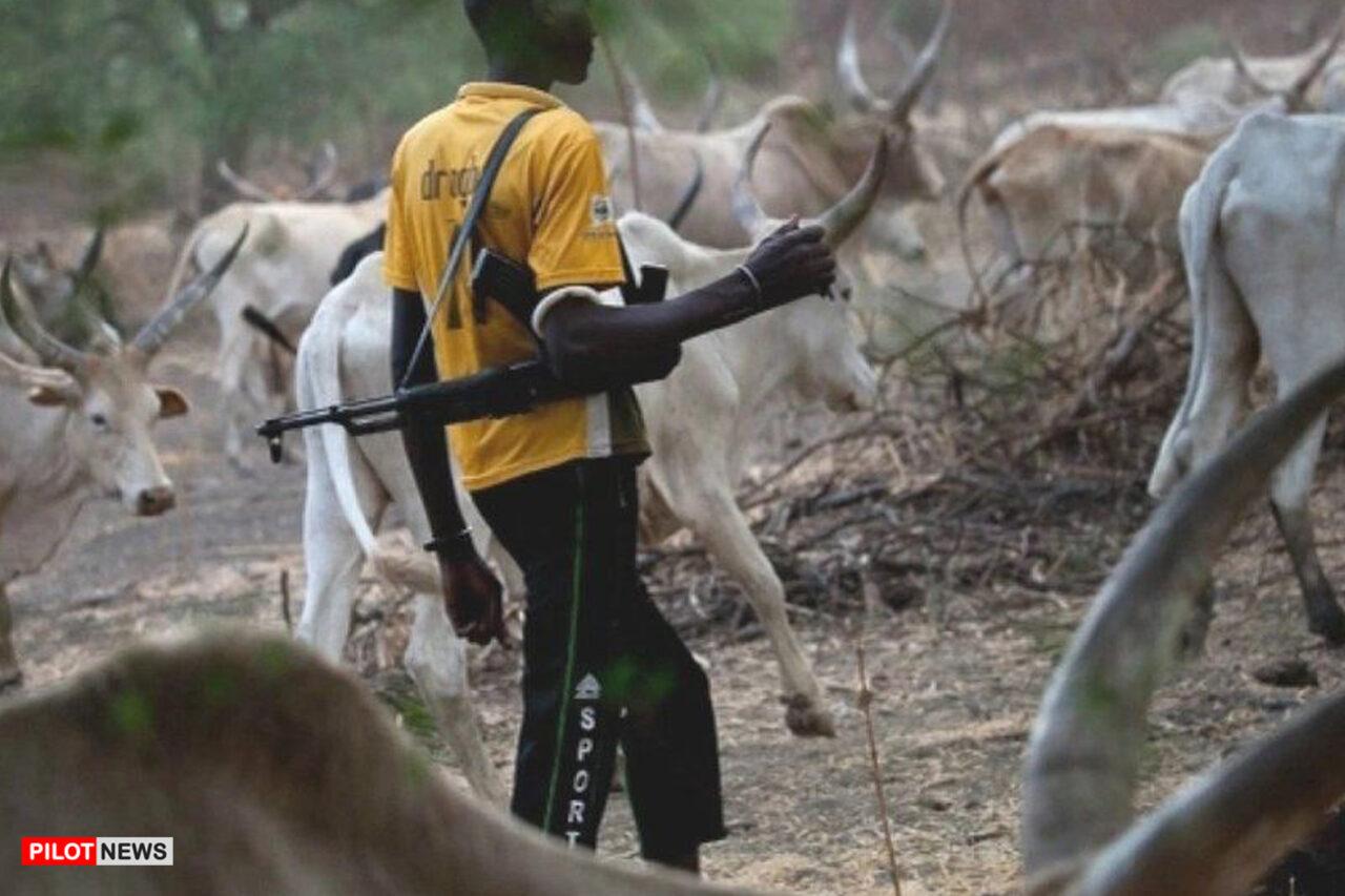 https://www.westafricanpilotnews.com/wp-content/uploads/2021/02/Herders-Fulani-Cattle-Herders-2-19-21-1280x853.jpg