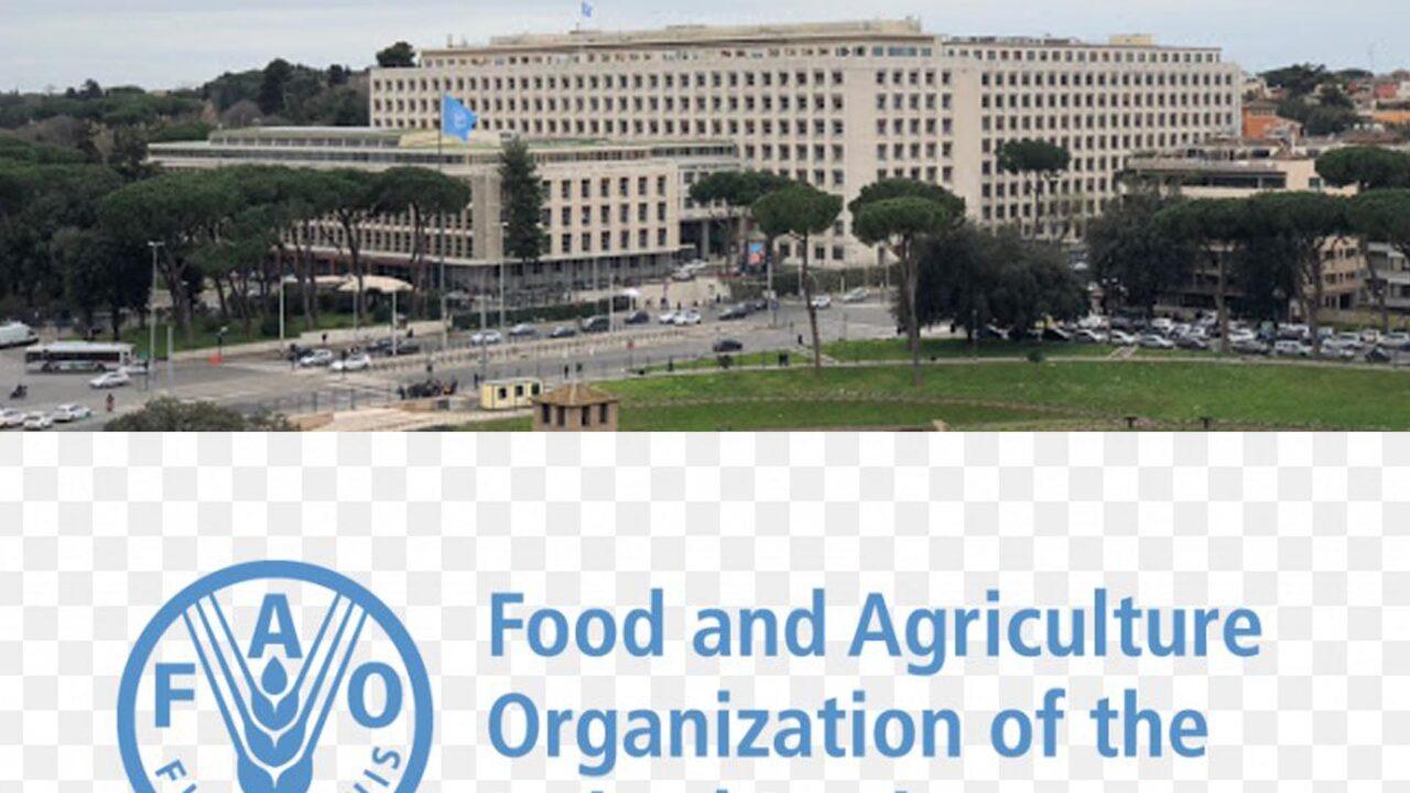 https://www.westafricanpilotnews.com/wp-content/uploads/2021/03/FAO-Headquaters-3-11-21-1280x720.jpg