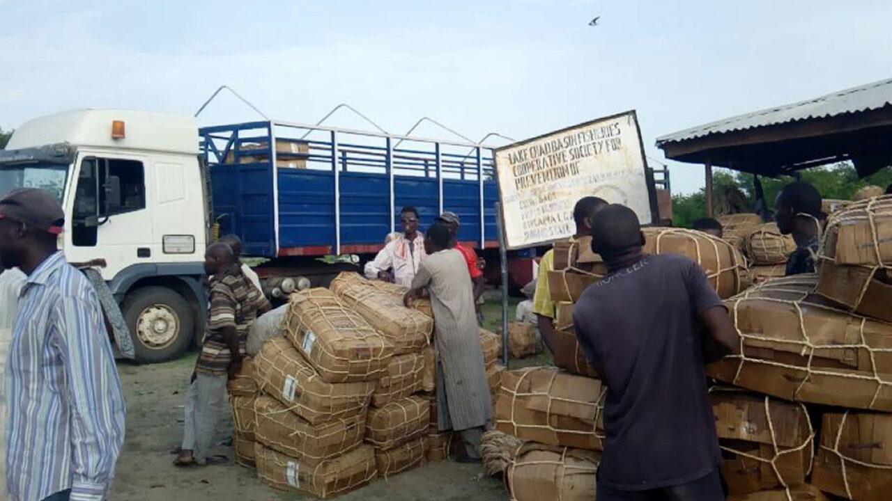 https://www.westafricanpilotnews.com/wp-content/uploads/2021/03/Fish-Market-Baga-Borno-State-3-5-21-1280x720.jpg