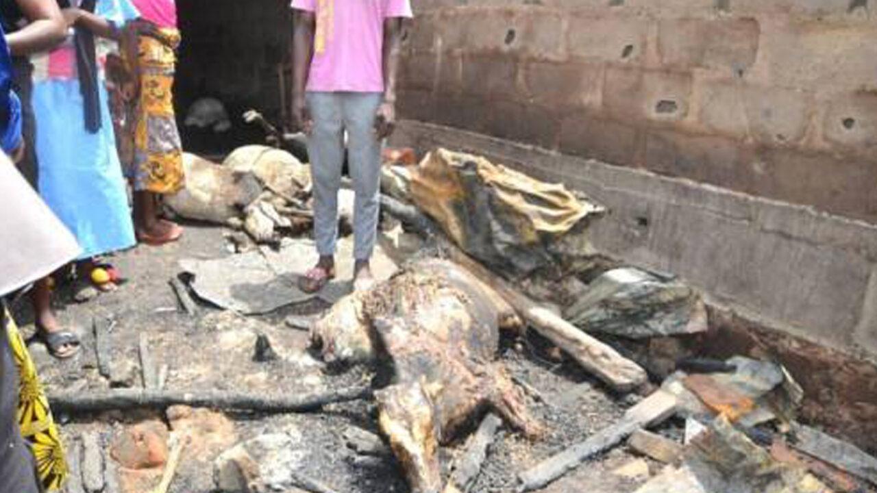 https://www.westafricanpilotnews.com/wp-content/uploads/2021/06/livestock-in-butchers-market-burnt-in-a-late-night-fire-in-Ilorin-image-1280x720.jpg