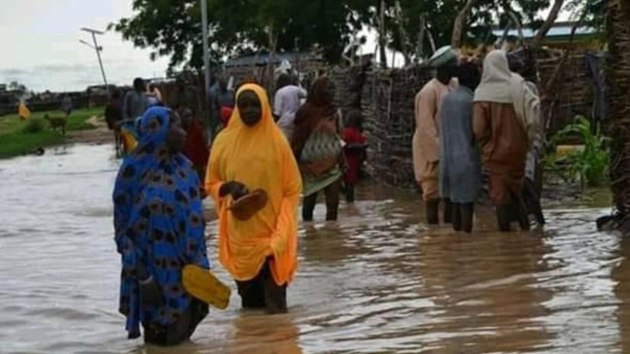 https://www.westafricanpilotnews.com/wp-content/uploads/2021/08/flood-in-yobe-death-toll-increases_8-18-21-1280x720.jpg