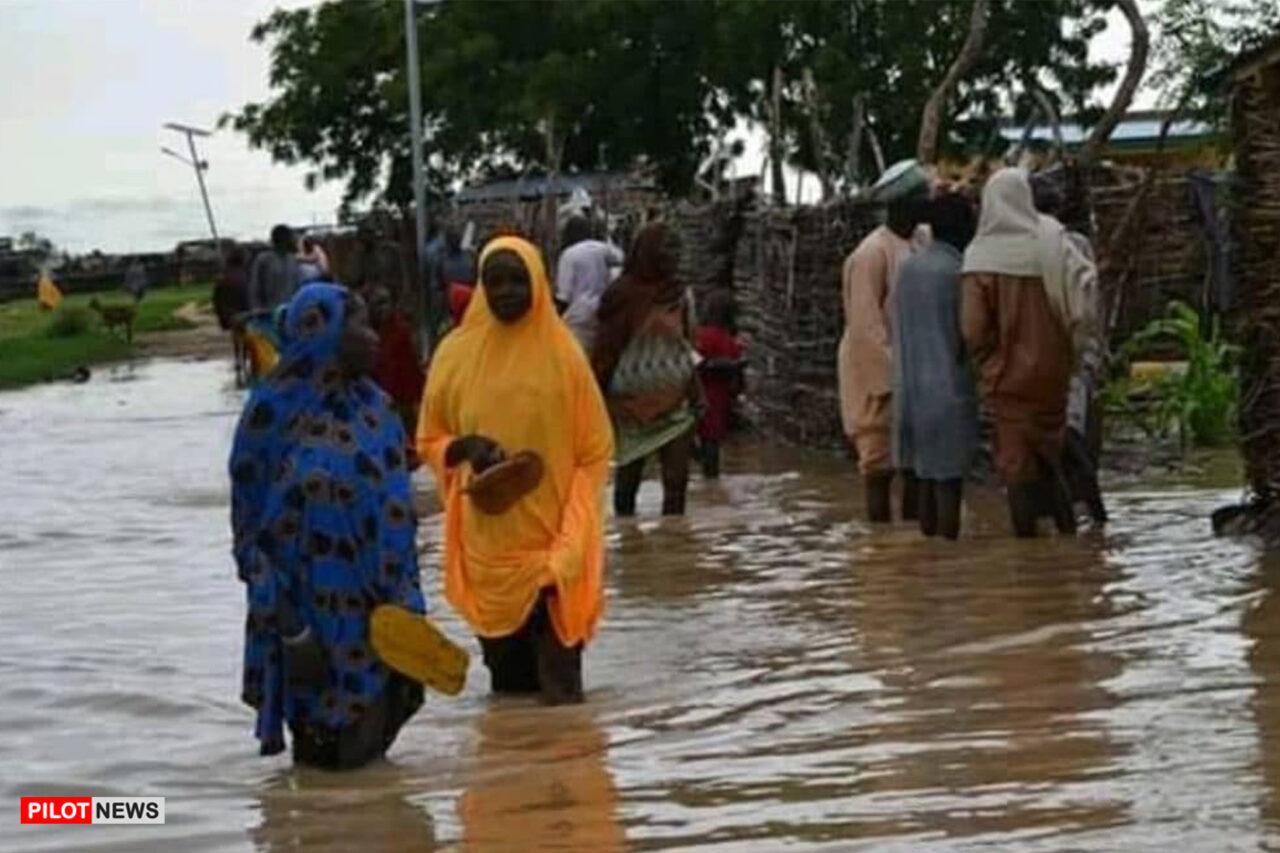 https://www.westafricanpilotnews.com/wp-content/uploads/2021/08/flood-in-yobe-death-toll-increases_8-18-21-1280x853.jpg