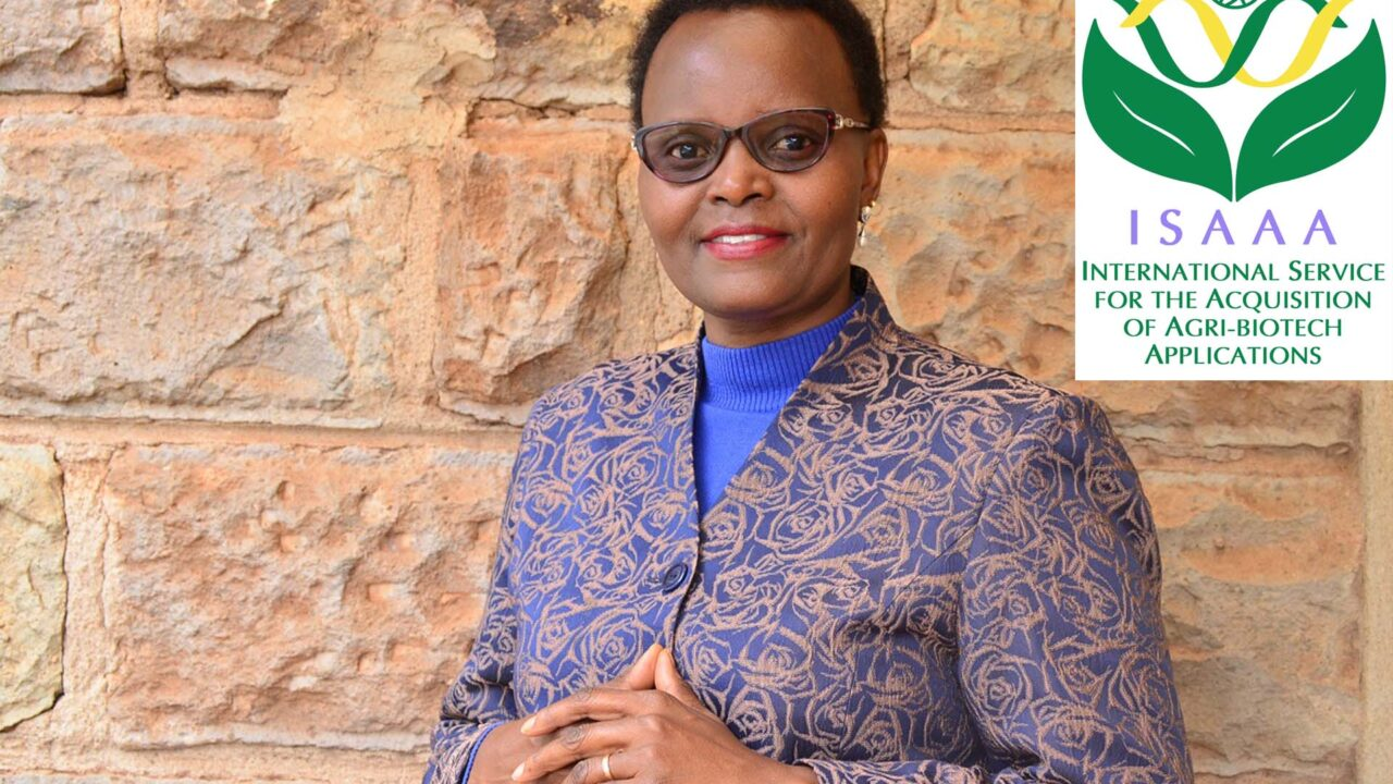 https://www.westafricanpilotnews.com/wp-content/uploads/2021/09/Margaret-Karembu-ISAA-Director_file-1280x720.jpg