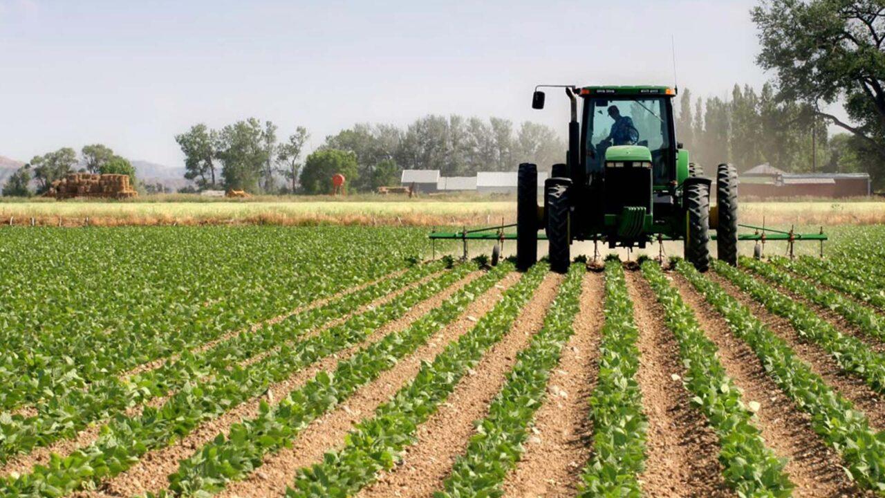 https://www.westafricanpilotnews.com/wp-content/uploads/2021/10/Agriculture-sector_file-1280x720.jpg