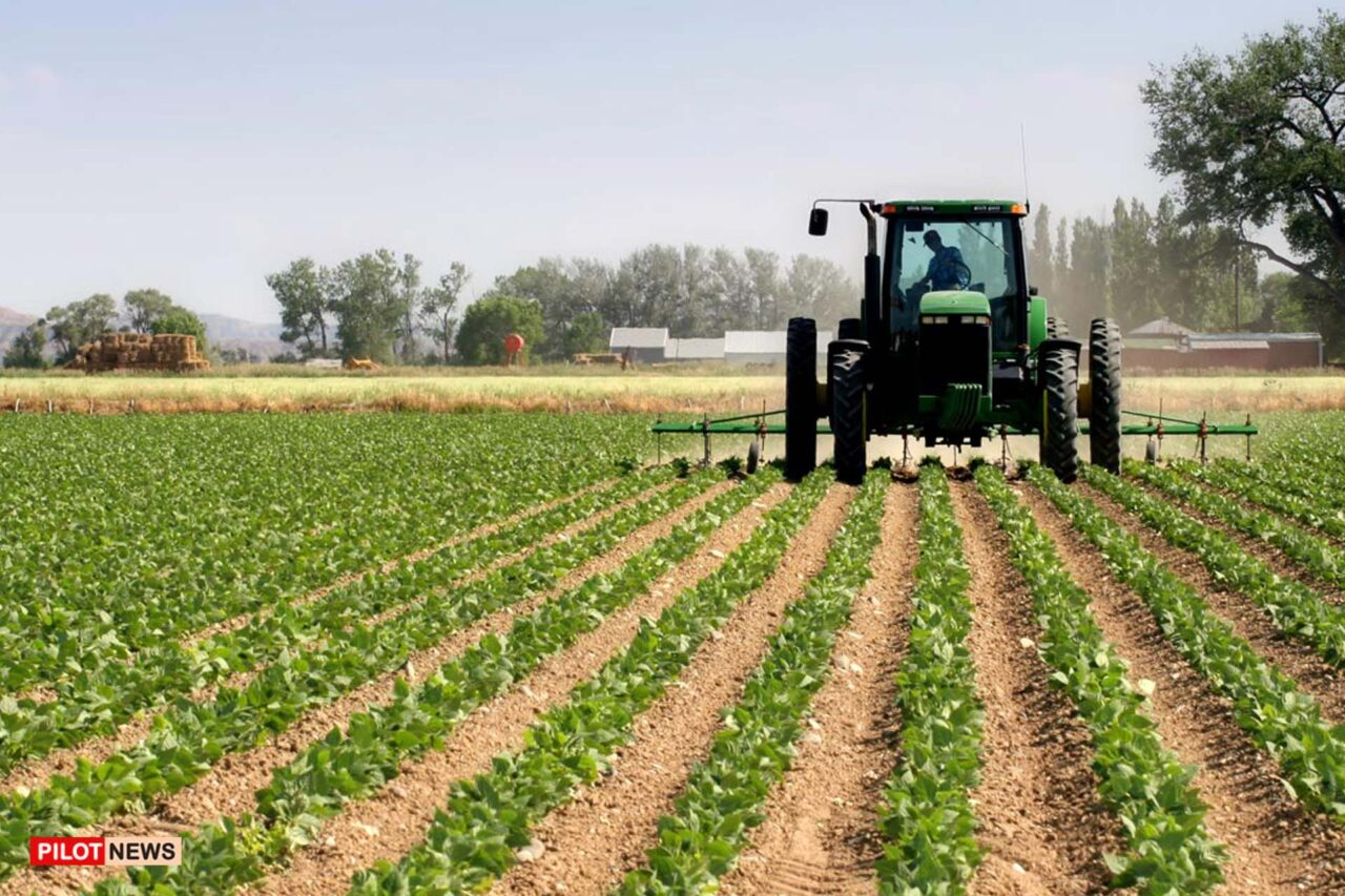 https://www.westafricanpilotnews.com/wp-content/uploads/2021/10/Agriculture-sector_file-1280x853.jpg