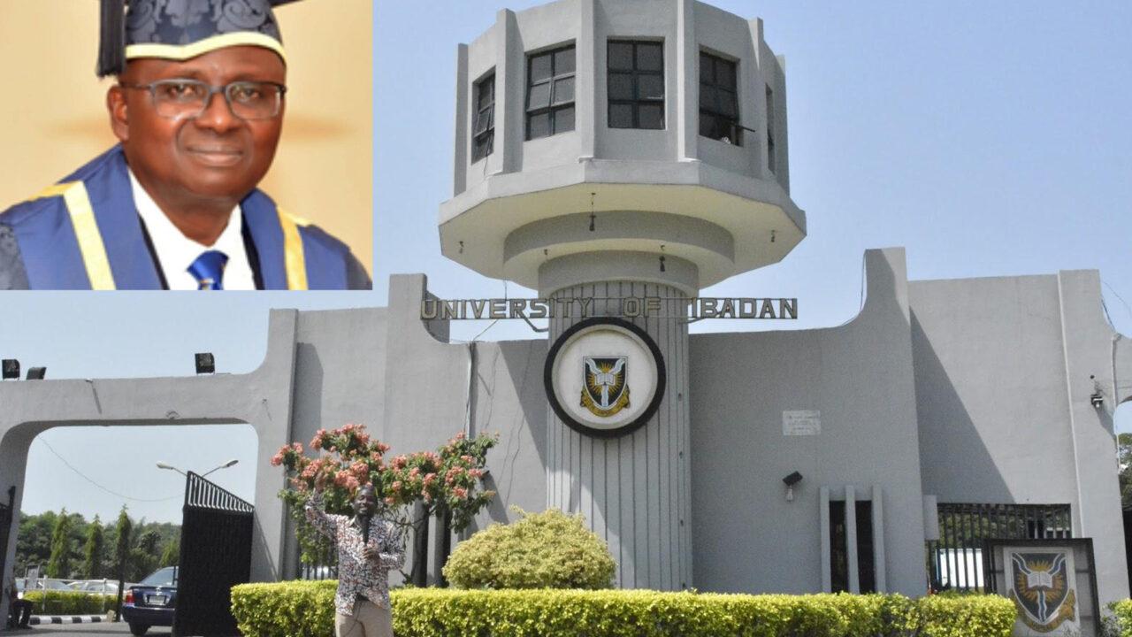 https://www.westafricanpilotnews.com/wp-content/uploads/2021/10/Prof.-Kayode-Adebowale-VC-Unibadan_file-1280x720.jpg